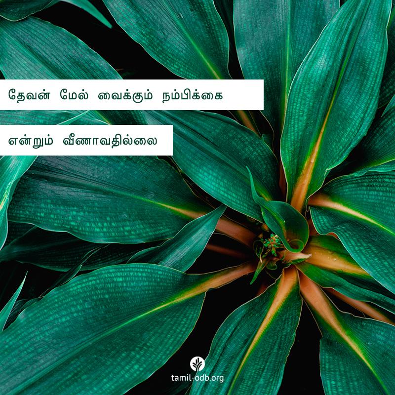 Share Tamil ODB 2020-10-27