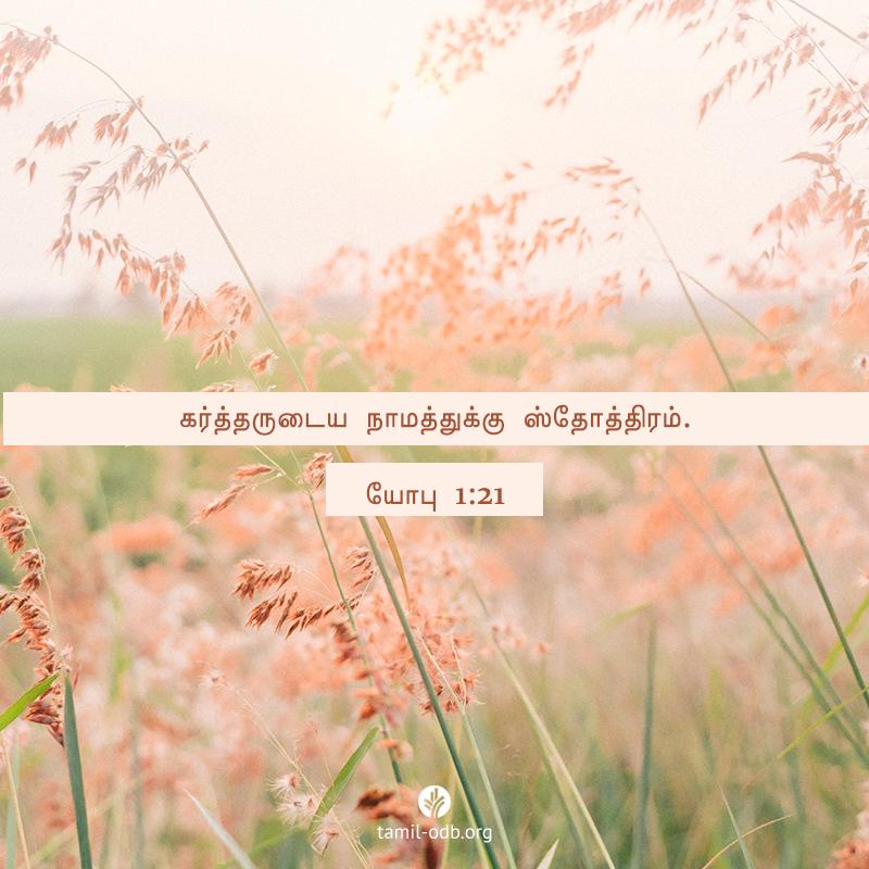 Share Tamil ODB 2020-10-31