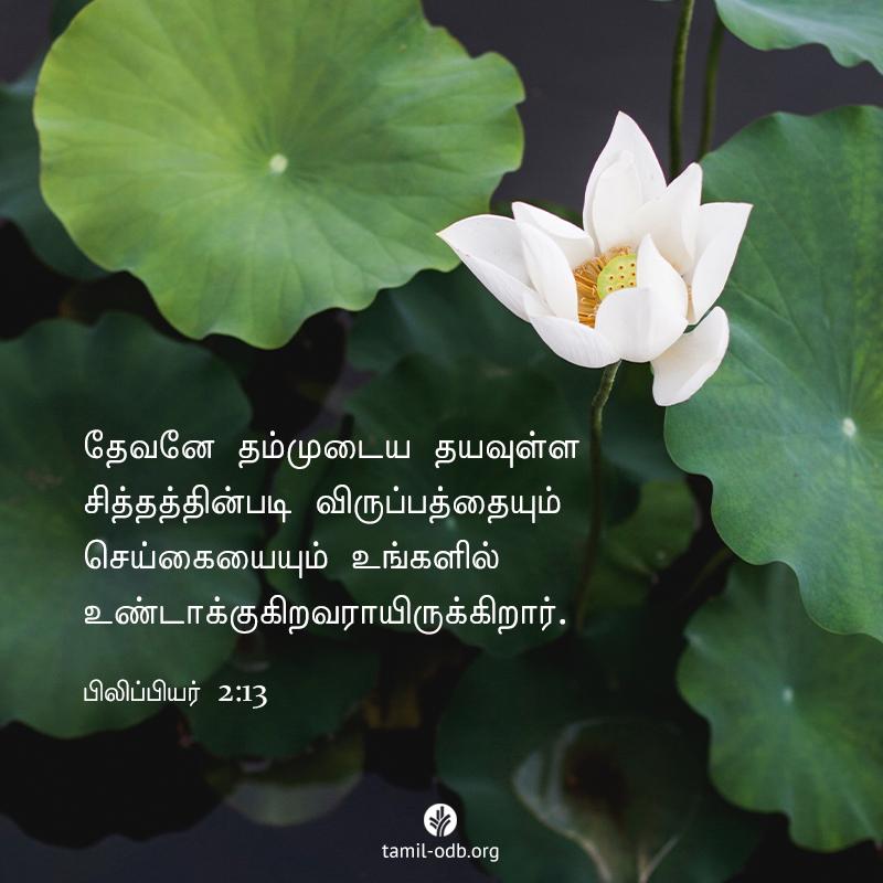 Share Tamil ODB 2020-05-31