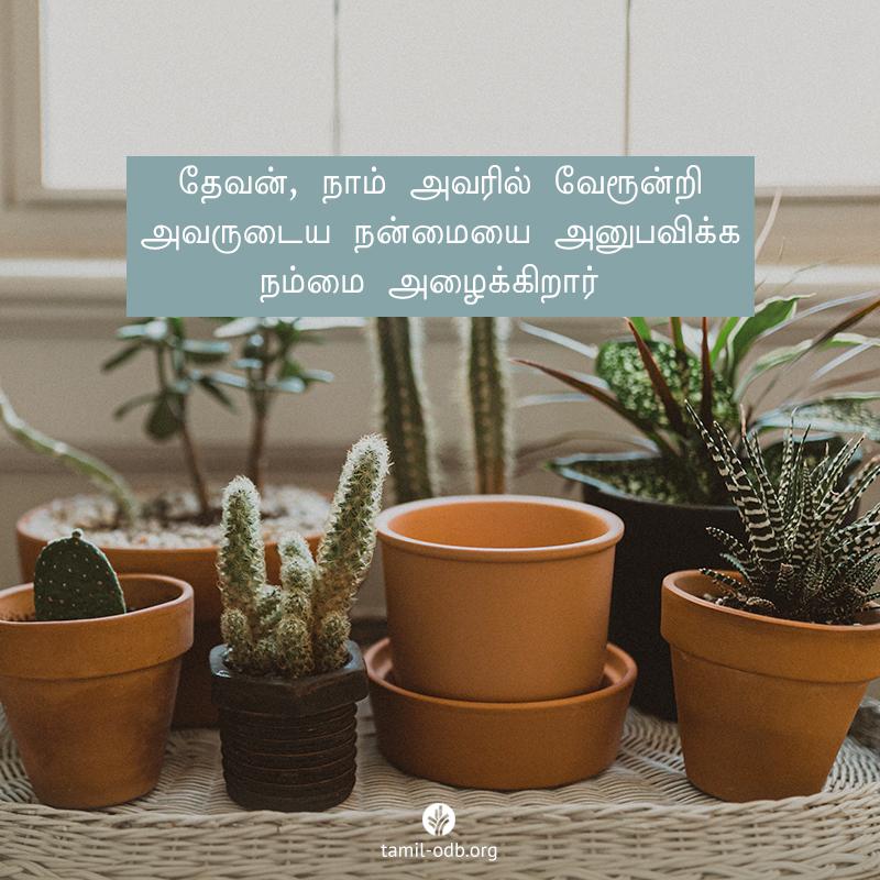 Share Tamil ODB 2020-07-06