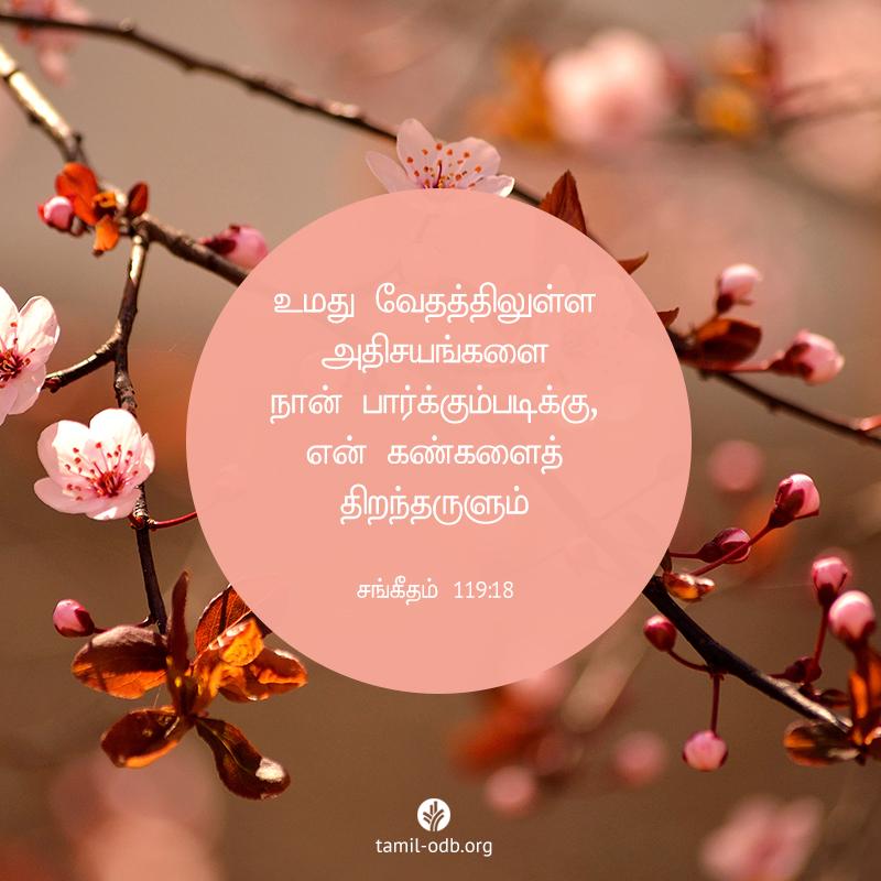 Share Tamil ODB 2020-09-29