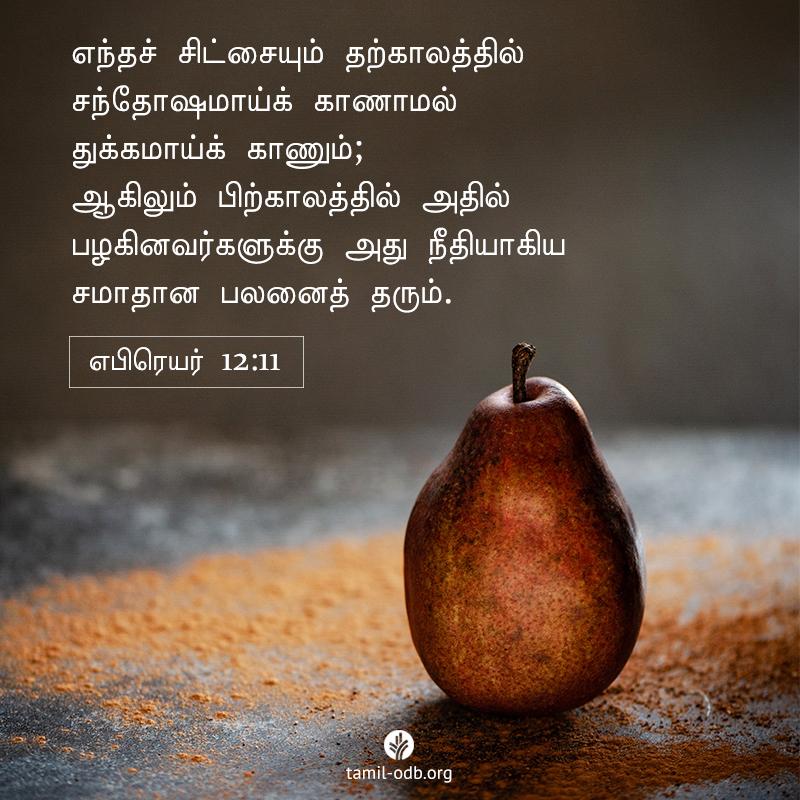 Share Tamil ODB 2021-04-27