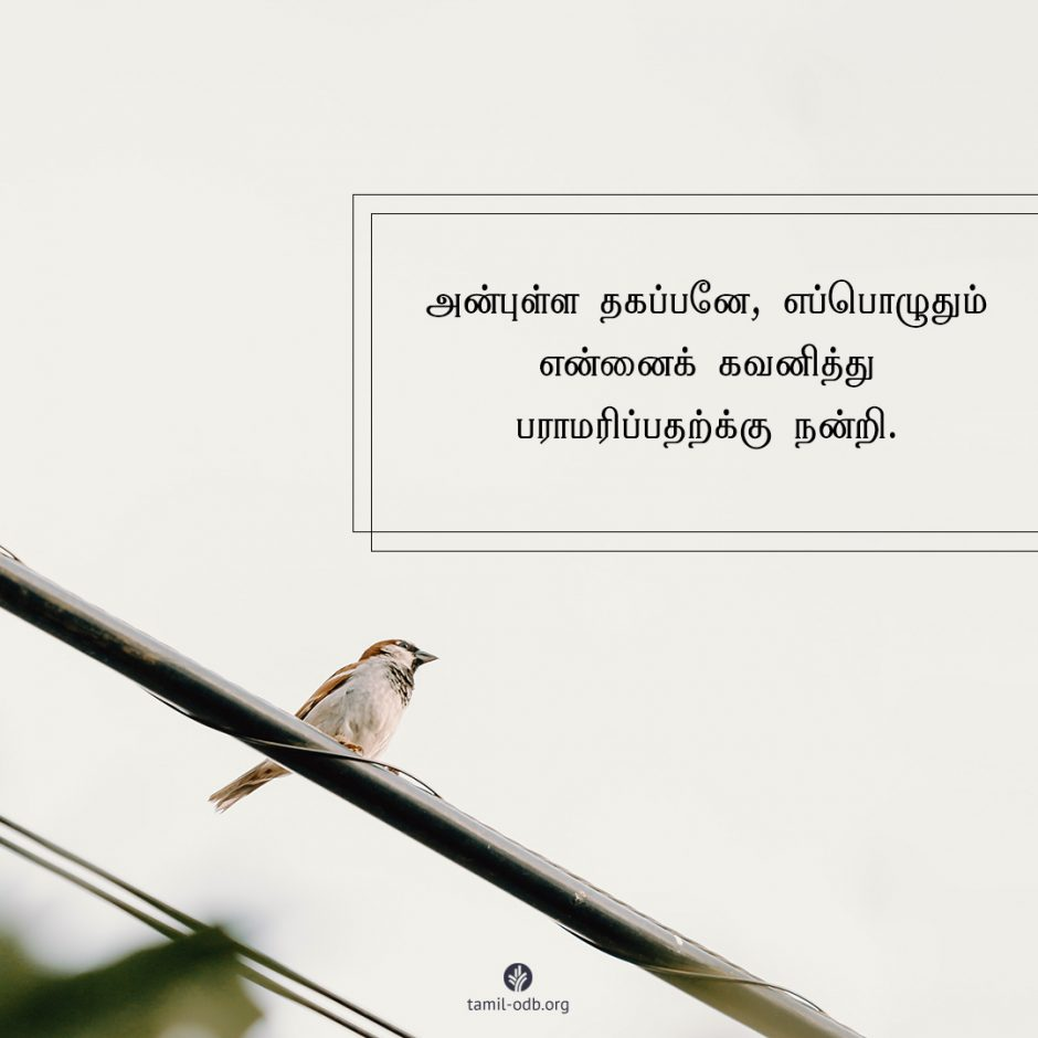 Share Tamil ODB 2021-06-15