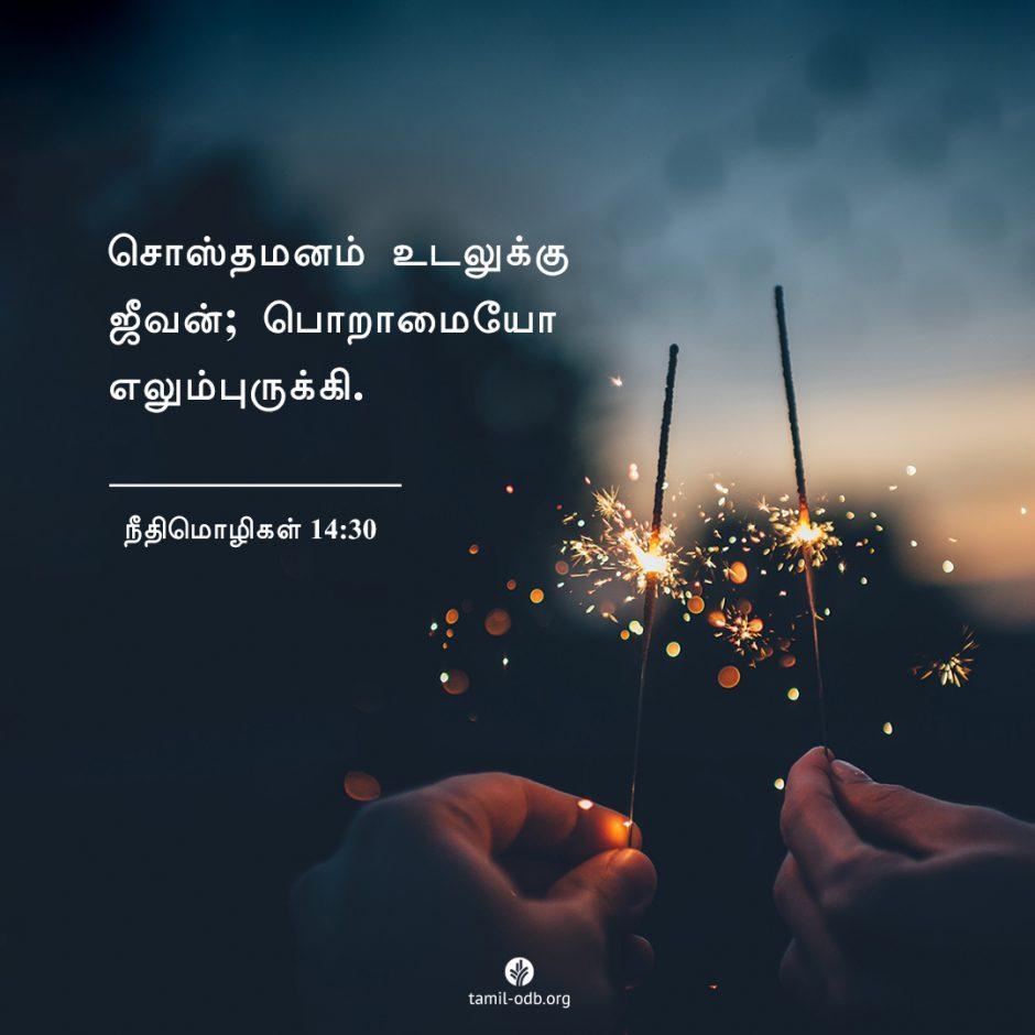 Share Tamil ODB 2021-07-30
